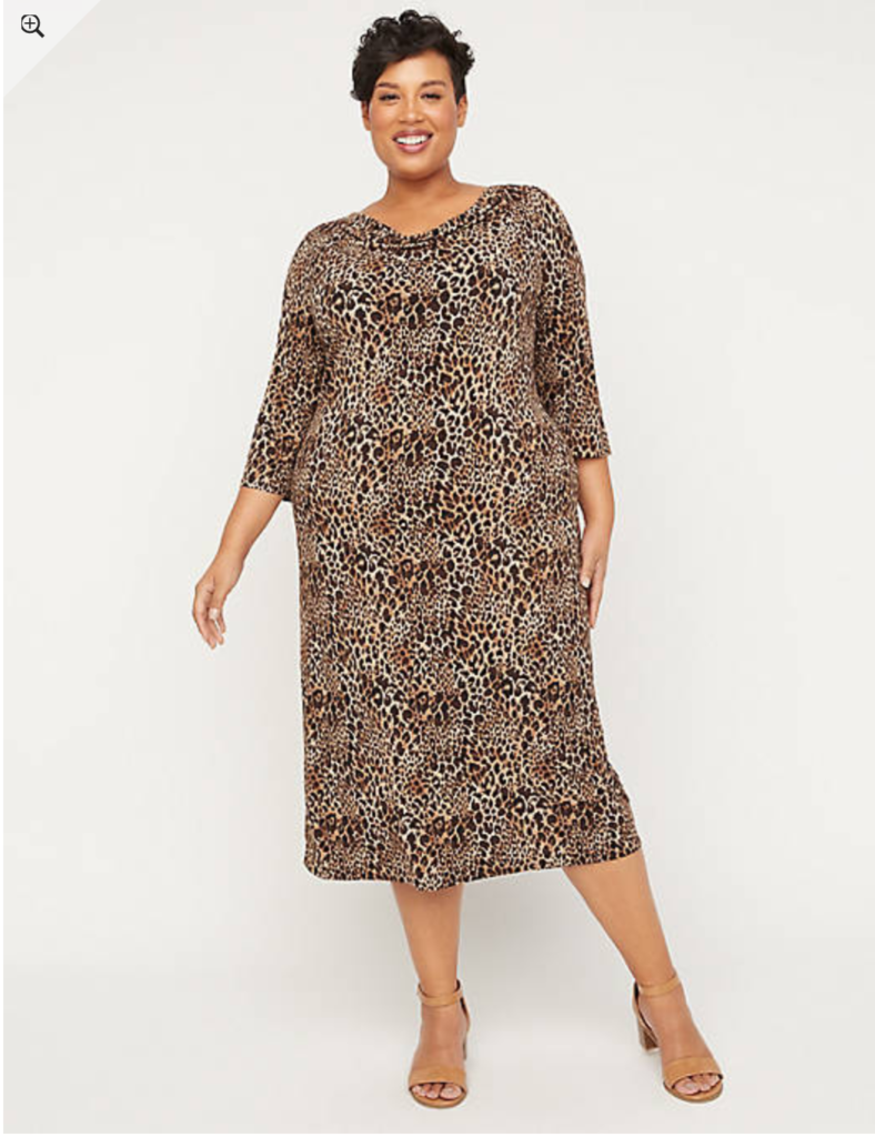 plus size leopard print dress with long sleeves
